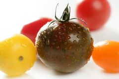 Little cherry varied multi color tomatoes Royalty Free Stock Photo