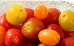 Little cherry varied multi color tomatoes Stock Photos