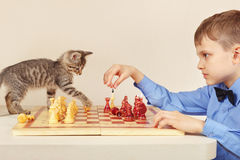 Little chessplayer with pretty kitten plays chess. Stock Photos