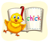 Little chick and a book Royalty Free Stock Photos