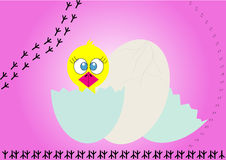 The little chick hatches from the egg Royalty Free Stock Image