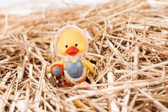 Little chick in the straw. Easter background Stock Photography