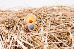 Little chick in the straw. Easter background Royalty Free Stock Photo