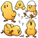 Little Chick. Vector illustration of Cartoon Little Chick Character Set royalty free illustration