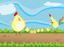 Little chicken. Illustration about a chicken family out in the garden Royalty Free Stock Images