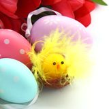 Little chicken, colorful easter eggs and pink tulips Stock Photography