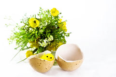 Little chicken in an egg shell. With flowers on white background Royalty Free Stock Images