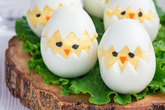Little chicken in the nest, deviled eggs served with salad on wooden board, horizontal Royalty Free Stock Photo