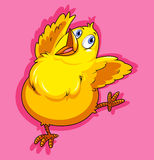 Little chicken on pink Stock Photos