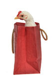 Little chicken sitting inside the shopping bag Royalty Free Stock Images