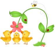 Little chicks admiring a flower Stock Images