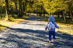 Little child in the autumn forest Royalty Free Stock Images