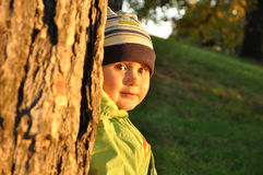 Little child behind tree Royalty Free Stock Photos