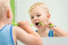 Little child boy brushing teeth in front of a mirror in bathroom royalty free stock images
