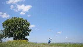 Little Child Boy Enjoy Walking With Flying Kite Have Fun On Nature Picnic. slow motion.  stock video