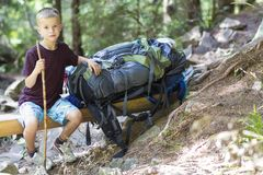 Little child boy with hikers backpack travelling in forest.  stock photos