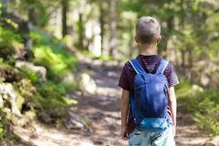 Little child boy with hikers backpack travelling in forest.  Royalty Free Stock Photo