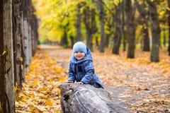 Little child boy 1 years old walks on fallen leaves Royalty Free Stock Photo