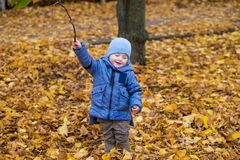 Little child boy 1 years old walks on fallen colorful leaves Royalty Free Stock Photography