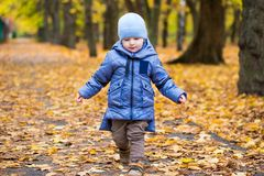 Little child boy 1 years old walks on fallen leaves Royalty Free Stock Images