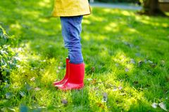 Little child in colorful rain boots. Close-up of school or preschool legs of kid boy or girl in different rubber boots. Jeans and jackets. Footwear for rainy royalty free stock photos