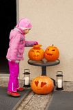 Little child considers Halloween pumpkin. Stock Photos