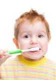 Little child with dental toothbrush Royalty Free Stock Image