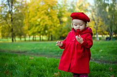 Little child discovering the world Royalty Free Stock Image