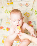 Little child eating biscuit Royalty Free Stock Photo