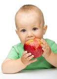 Little child is eating red apple Royalty Free Stock Photography