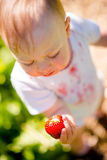 Little child examining strawberry Royalty Free Stock Photography