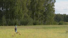 Fun with kite in the country. Little child flying rainbow kite in the country. Outdoor fun for kids stock video