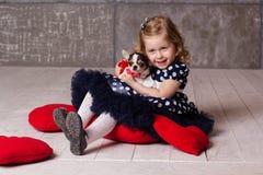 Little child girl is holding small chuhuahua dog Stock Photos