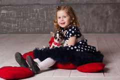 Little child girl is holding small chuhuahua dog Royalty Free Stock Image