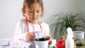 Little child girl replant a flower at home, indoor stock video