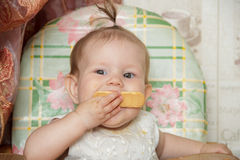 Little child girl sits in a highchair and eats cookies Stock Photo