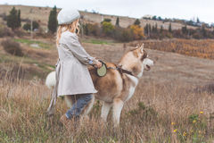 Little child girl is walking with husky dog Royalty Free Stock Photos