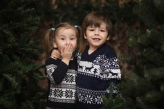 A little child by the New Year tree. Children decorate the Chris. Tmas tree. Baby in a sweater by a green tree in studio.r Stock Images