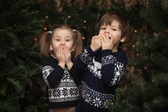 A little child by the New Year tree. Children decorate the Chris. Tmas tree. Baby in a sweater by a green tree in studio.r Stock Image