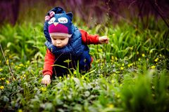 Little child picking flowers on street. Young cute child in warm clothes collecting flowers on green lawn royalty free stock photos
