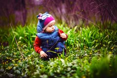 Little child picking flowers on street. Young cute child in warm clothes collecting flowers on green lawn stock photography