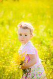 Little child playing with field flowers on spring or summer day Stock Images