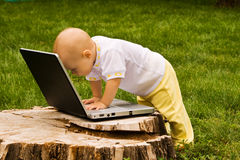 Little child playing with notebook Stock Photos