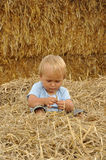 Little child playing in straw Stock Photography