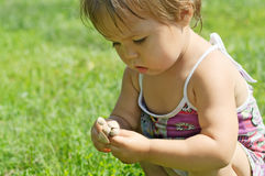 Little child playing with toxic toadstool mushrooms. Little girl playing with toxic toadstool mushrooms Stock Photo
