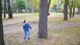 A little child plays with a squirrel in the Park stock video footage