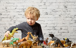 A little child plays with toys animals Stock Images