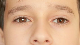 Little child`s eyes, innocence, eyeballs, front view. close-up, a nervous tic. Brown eyes stock footage