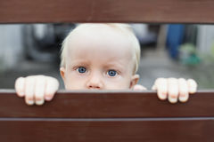 Little child sadly looking out through the fence stock photo