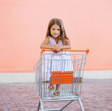Little child in shopping cart Stock Photos
